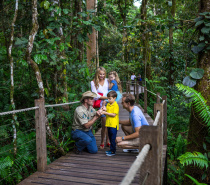 Enjoy a day in the picturesque mountain village of Kuranda via the Kuranda Scenic Railway.