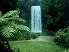Atherton Tablelands Tours