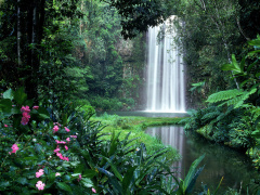 Tablelands and Waterfalls Adventure tour