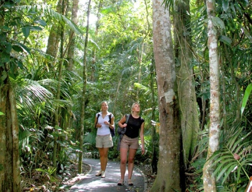 Jumrum Creek Walk kuranda