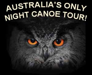 TOURS from Yungaburra