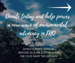 Donate this EOFY to help power a new wave of environmental advocacy in FNQ
