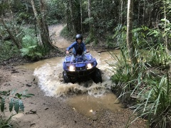 Riding through the Rainforest