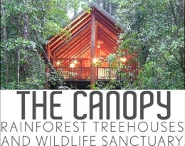The Canopy Rainforest Treehouses & Wildlife Sanctuary