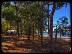 Tablelands - Accommodation - Atherton Tablelands - Tourism